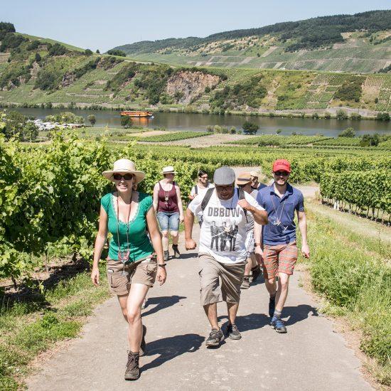 Sommer-Weinwanderung